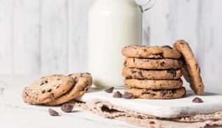 EASY GOURMET CHOCOLATE CHIP 2.7LB